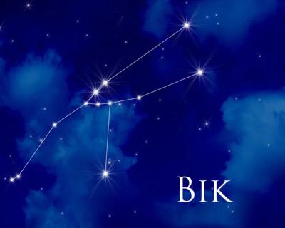 Bik - astrološko znamenje